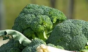 broccoli 5