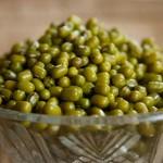 Mung Beans 390724 1920 150×150
